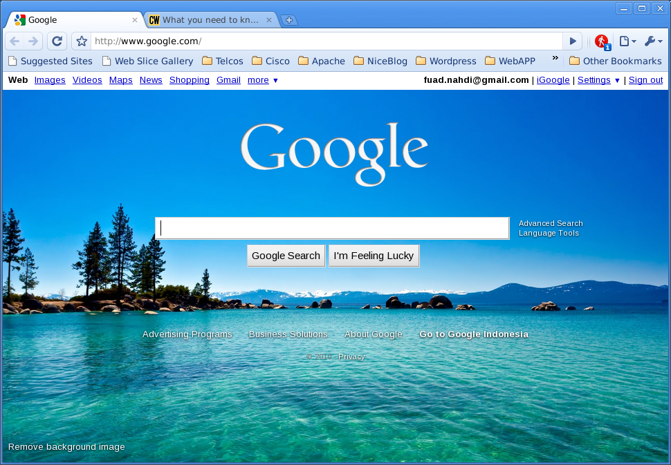Google Chrome on Slackware 13.1