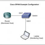 Cisco SPAN Sample Topology